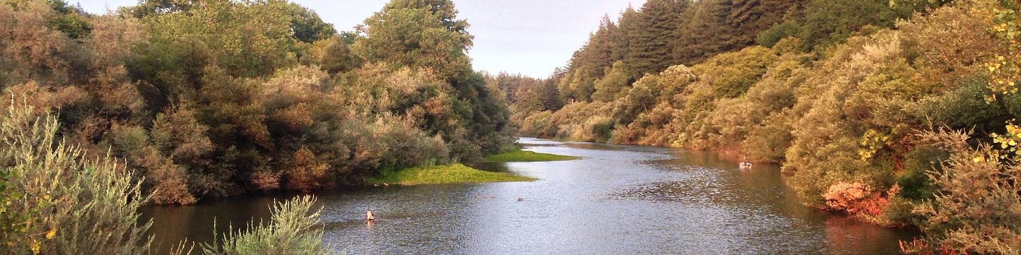 Russian river lodging applewood inn guerneville for Russian river cabins guerneville