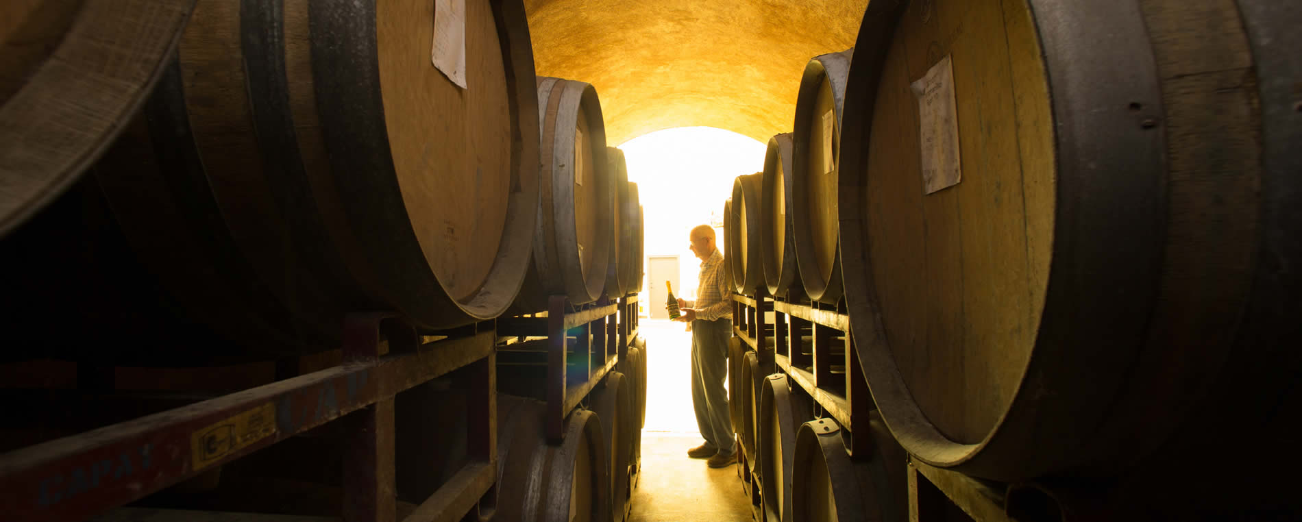 russian river valley wineries