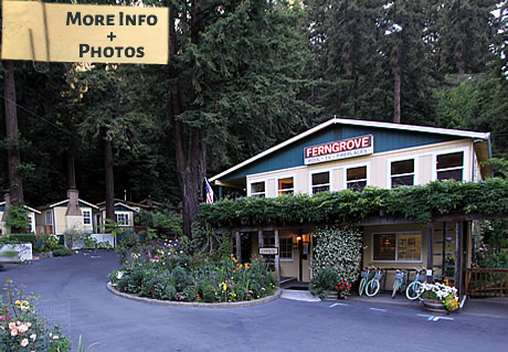 fern grove cottages guerneville ca bed and breakfast inn