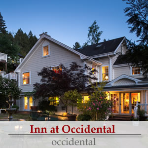 sonoma wine country bed and breakfast boutique hotel